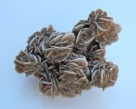 Desert Rose (Barite)